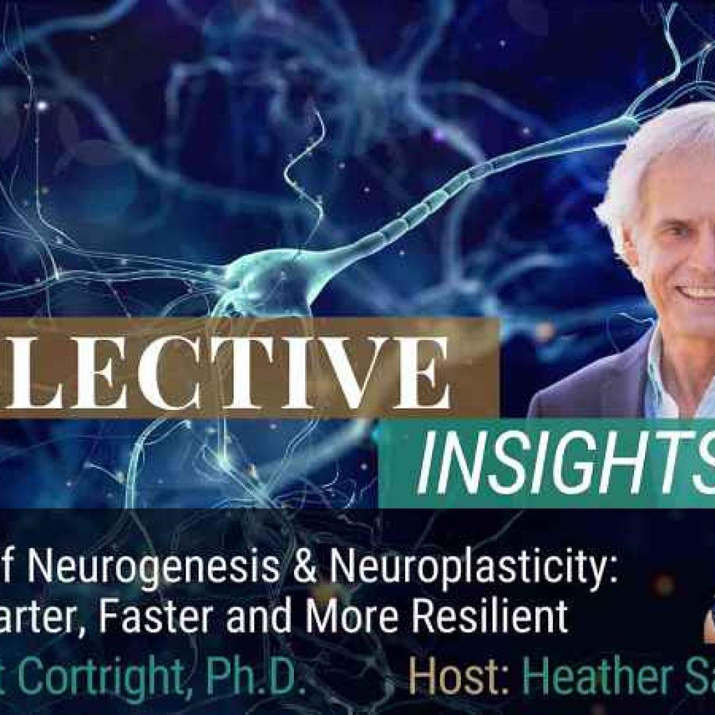 Brant Cortright PhD Neurogensis